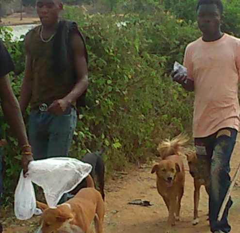Photos: Gross Unemployment Forces Ashaiman Youth Into Game Hunting