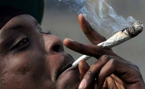 'Weed' Smokers Take Over Tema School – Residents